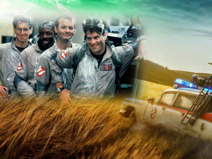 """Bill Murray afferma che Harold Ramis è """"mancato molto"""" in """"Ghostbusters: Legacy"""""""